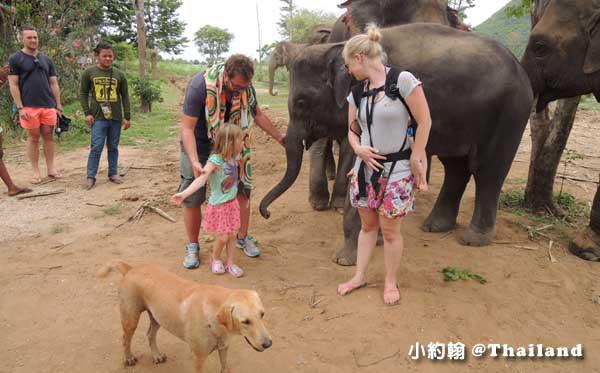 泰國大象世界Elephants World為大象工作@Kanchanaburi20.jpg