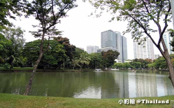 Lumphini Park曼谷倫披尼公園騎單車趣 Sofitel So Bangkok4.jpg
