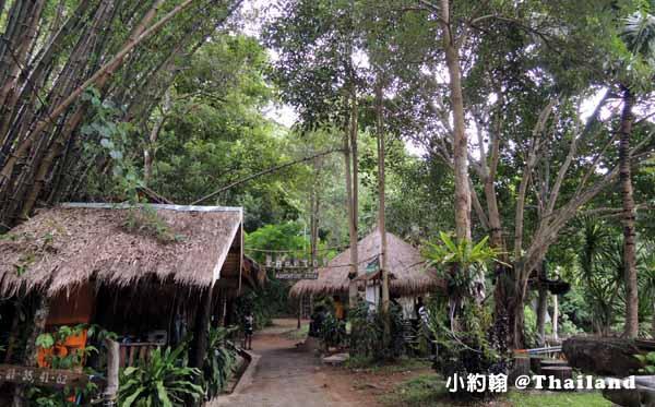 Tree Top Adventure Park山頂叢林冒險公園 泰國北碧府.jpg