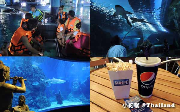 泰國曼谷7天6夜自由行- SEA LIFE Bangkok Ocean World 海洋世界水族館.jpg