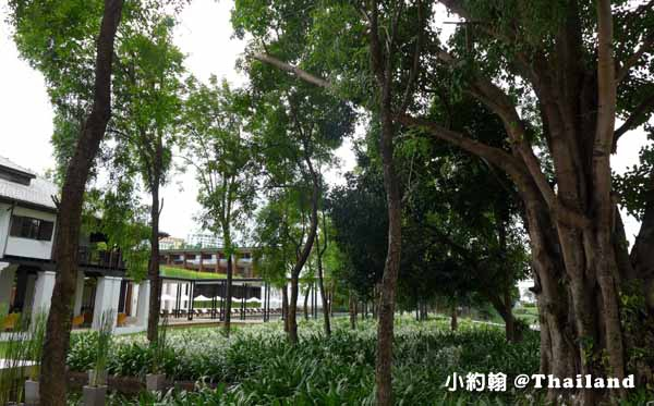 Anantara Chiang Mai Afternoon Tea清邁賓河邊老樹下享受下午茶9.jpg