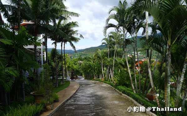 Panviman Chiang Mai Spa Resort清邁高山天堂Spa度假村飯店 椰林大道.jpg