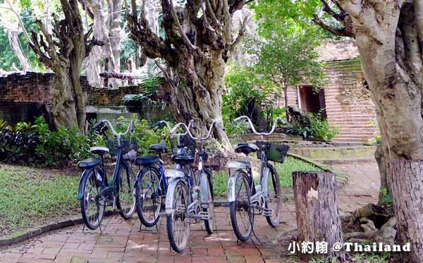 Dhara Dhevi Hotel Chiang Mai頂級奢華渡假村-腳踏車.jpg