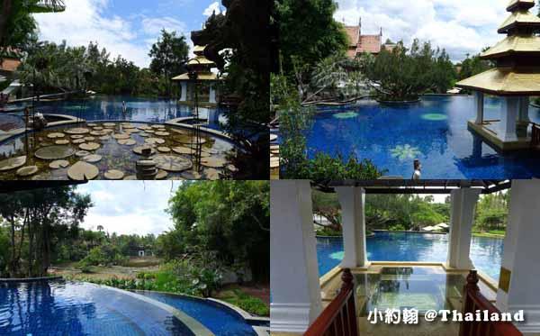 Dhara Dhevi Hotel Chiang Mai頂級奢華渡假村-泳池2.jpg