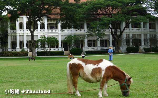 Dhara Dhevi Hotel Chiang Mai頂級奢華渡假村4-2小馬大草地.jpg