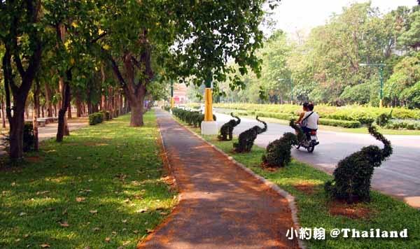 清邁大學Chiang Mai University(CMU)遊園車,電影泰冏7.jpg
