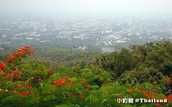 清邁必拜素帖寺Wat Phra That Doi Suthep雙龍寺-觀景台3.jpg