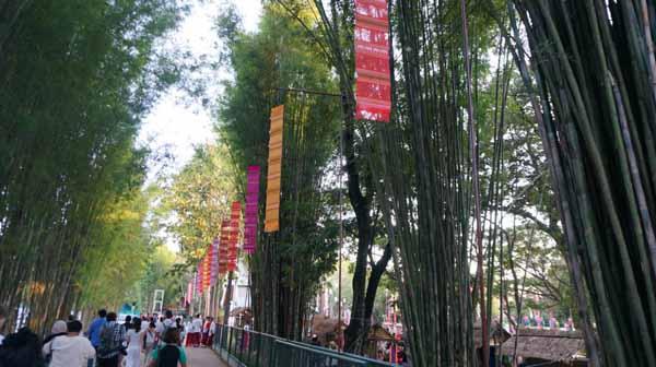 YEE PENG LANNA INTERNATIONAL Chiang Mai 4.jpg