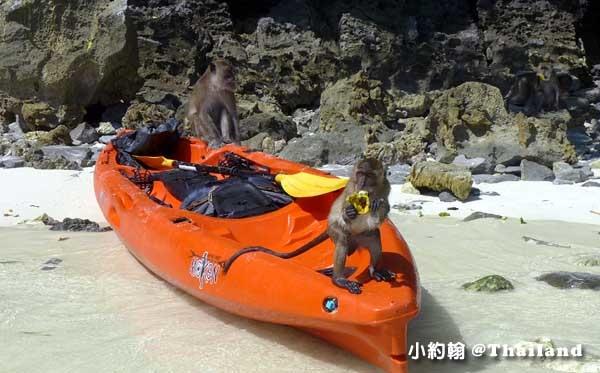 Monkey Beach猴子海灘@Phi Phi Islands3.jpg