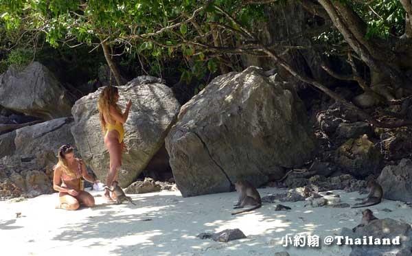 PP島一日遊Phi Phi Islands@Monkey Beach猴子海灘