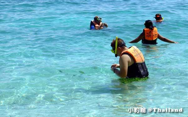 Mosquito island蚊子島@Phi Phi Islands浮潛.jpg