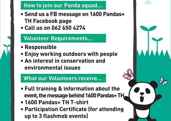 1600 Pandas+曼谷紙貓熊快閃活動徵志工.jpg