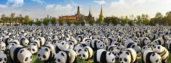 1600 Pandas+曼谷紙貓熊快閃活動1.jpg