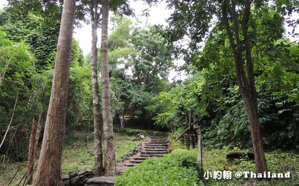 Home Phutoey River Kwai Resort Big trees.jpg