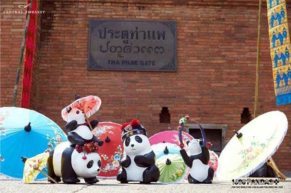 1600 Pandas+ Central Embassy Chiang mai.jpg