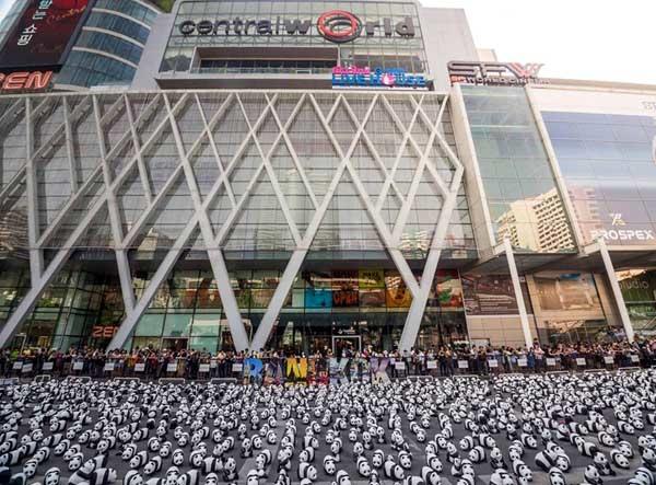 1600 Pandas+ Central World.jpg