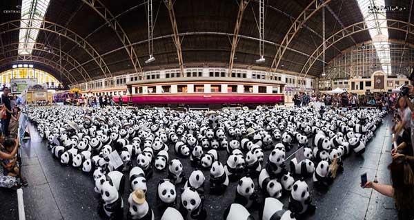 1600 Pandas+ Hua Lamphong.jpg