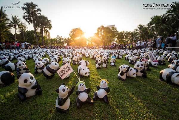 1600 Pandas Lumphini Park.jpg