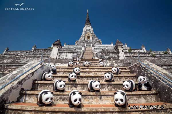 曼谷紙貓熊活動1600 Pandas+Thailand.jpg