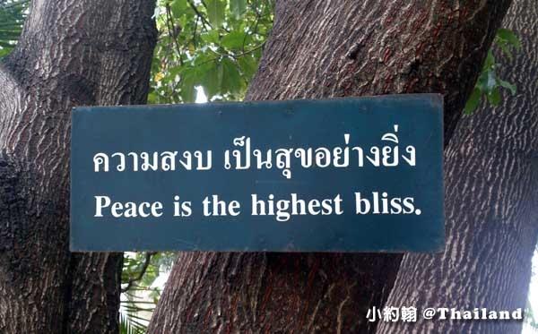 清邁Wat Phra Singh帕辛寺(帕邢寺)樹上小語.jpg