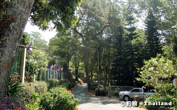 清邁蒲屏皇宮Bhubing Palace3.jpg