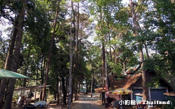 清邁蒲屏皇宮Bhubing Palace6.jpg