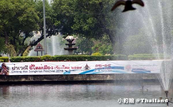 2016Songkran Festival Chiang mai2.jpg