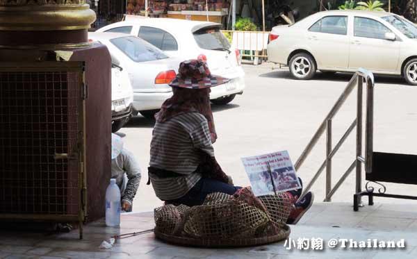 清曼寺Wat Chiang Man放生鳥