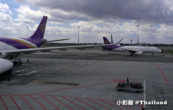 Thai Airways泰國航空.jpg