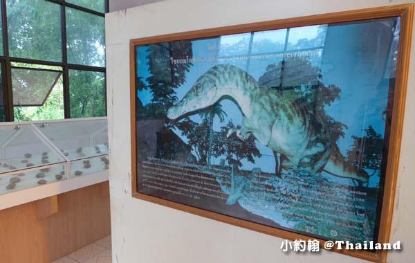 150 Million Year old Mollusk Fossil3.jpg