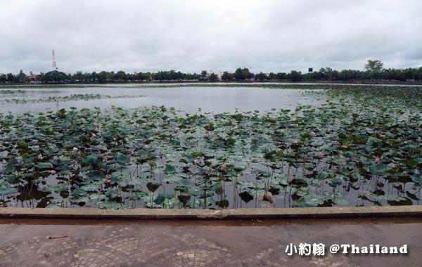 Nong Bua pond蓮花池Naresuan Health Promotion Public Park.jpg