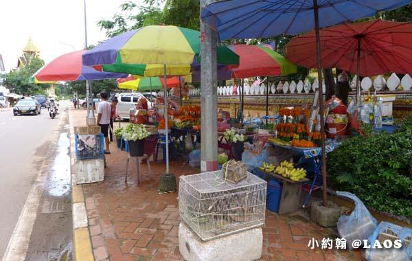 Wat Si Muang西孟寺Vientiane Laos2.jpg