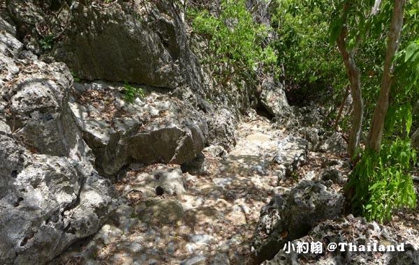 Laem Sala Nature Trail3.jpg