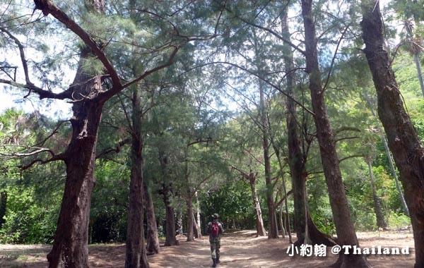 Laem Sala Nature Trail6.jpg