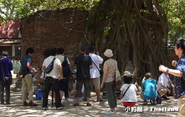 大城瑪哈泰寺Wat Mahathat Ayutthaya9.jpg