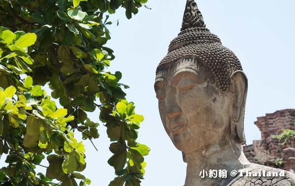 大城瑪哈泰寺Wat Mahathat Ayutthaya13.jpg