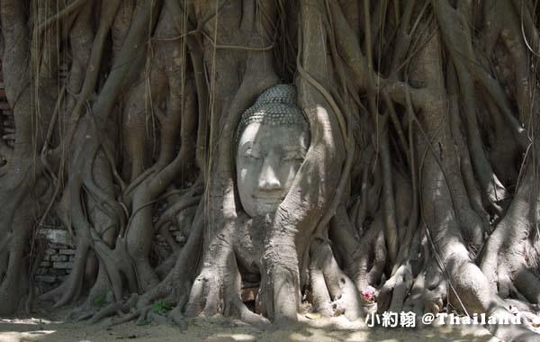 大城瑪哈泰寺Wat Mahathat Ayutthaya14.jpg