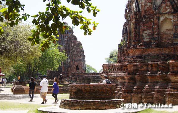 大城瑪哈泰寺Wat Mahathat Ayutthaya16.jpg