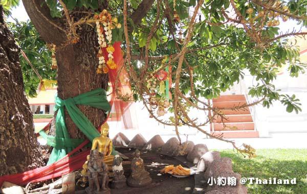 曼谷瑪哈泰寺Wat Mahathat Yuwaratrangsarit15.jpg