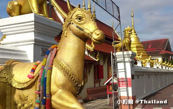 清邁金馬寺Wat Kuan Kama@Chiangmai .jpg
