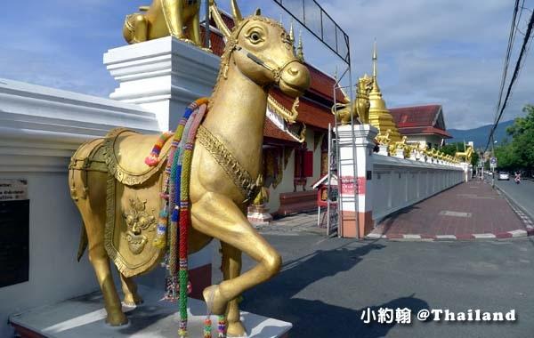 清邁金馬寺Wat Kuan Kama@Chiangmai8.jpg