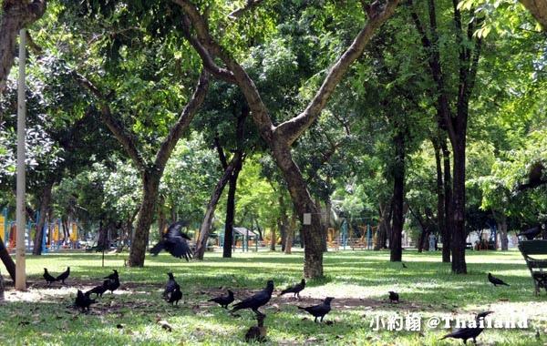 Lumphini Park曼谷倫披尼公園3.jpg
