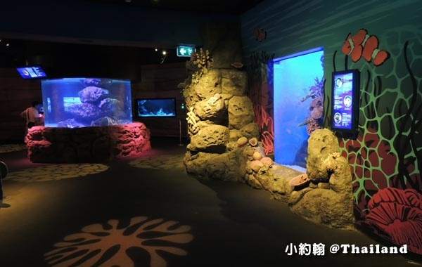 Sea Life Bangkok Ocean World曼谷海洋世界7.jpg