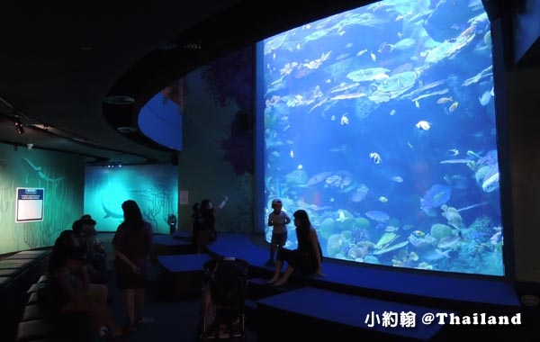 Sea Life Bangkok Ocean World曼谷海洋世界20.jpg