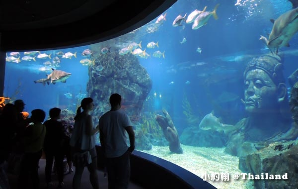 Sea Life Bangkok Ocean World曼谷海洋世界22.jpg
