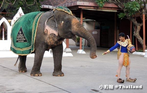 Siam niramit曼谷暹邏天使劇場大象表演.jpg