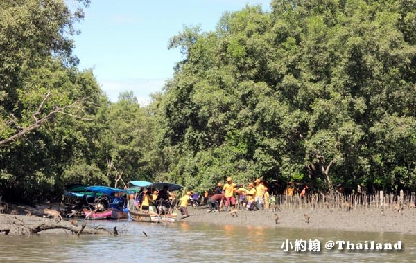 Eco-friendly Fun Trip@Klong khone Mangrove3.jpg