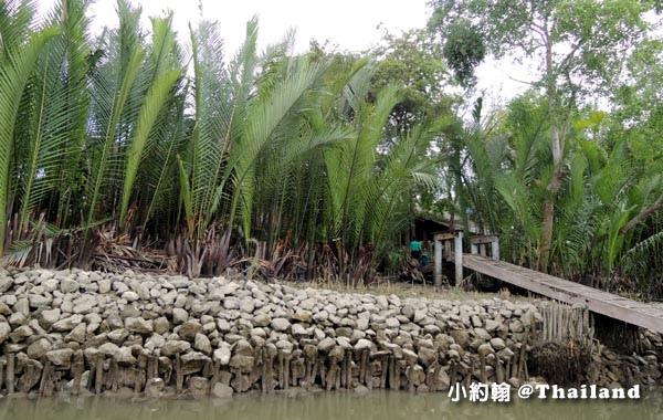 Coconut Museum.Baanrimklong Homestay.Samut Songkhram3.jpg