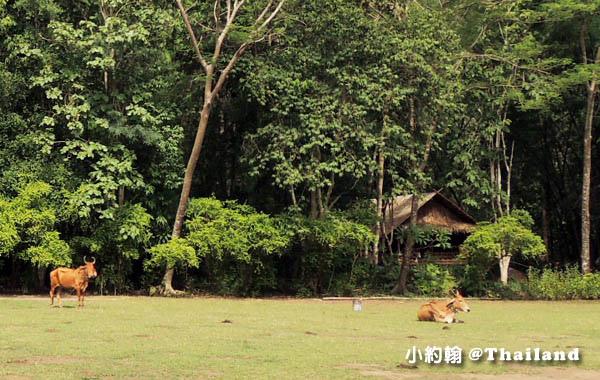 Mon Tribal Village Kanchanaburi16.jpg