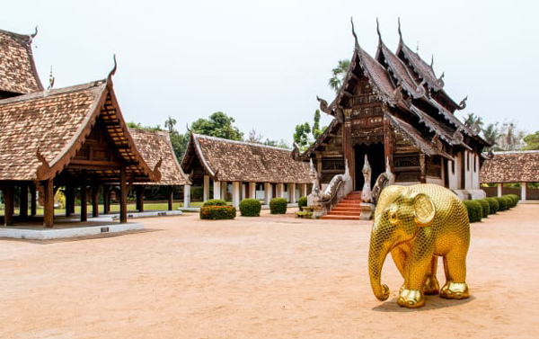 ELEPHANT PARADE IS COMING HOME TO CHIANG MAI.jpg